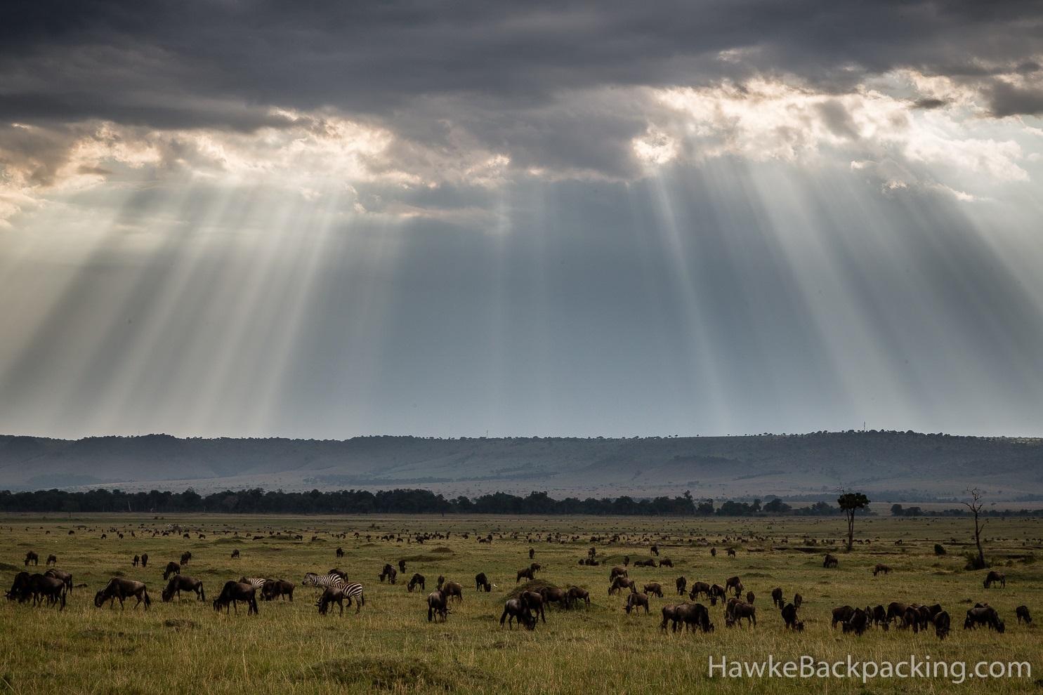 Maasai Mara National Reserve Hawkebackpacking Com