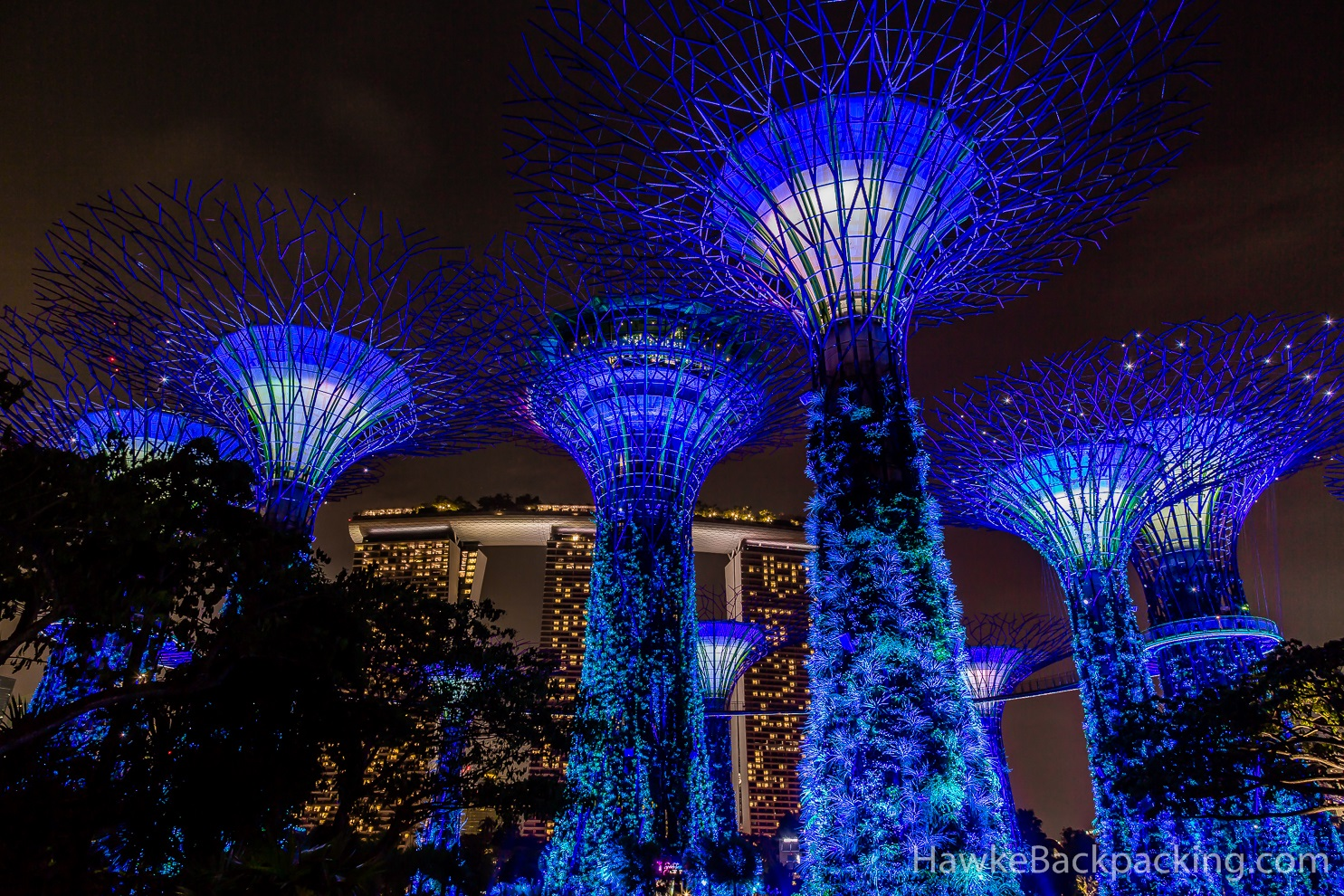 Singapore at night - Garden by the bay flower show ...