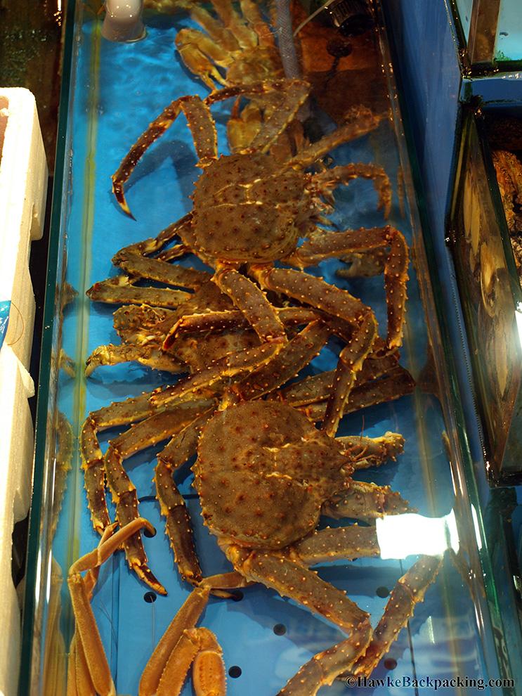 Noryangjin Fish Market Hawkebackpacking Com