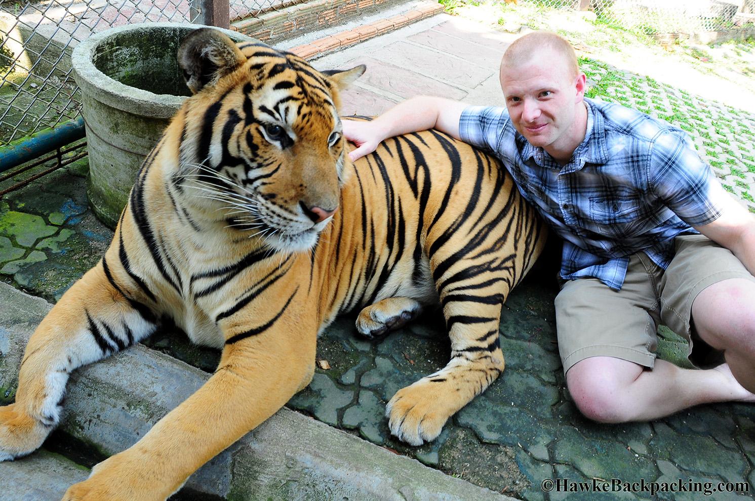 Tiger Kingdom - HawkeBackpacking.com