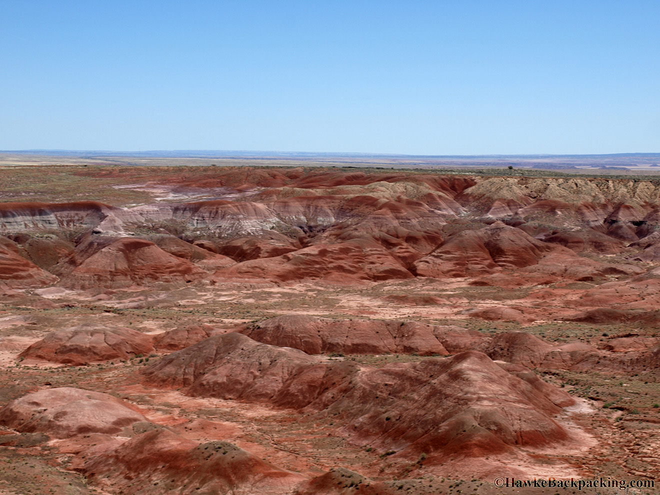 "petrified forest natl pk divorced singles personals Illness, divorce and attacking ants – the ""curse"" of stolen petrified wood at the petrified forest national park in arizona, stealing used to be a very prominent problem."
