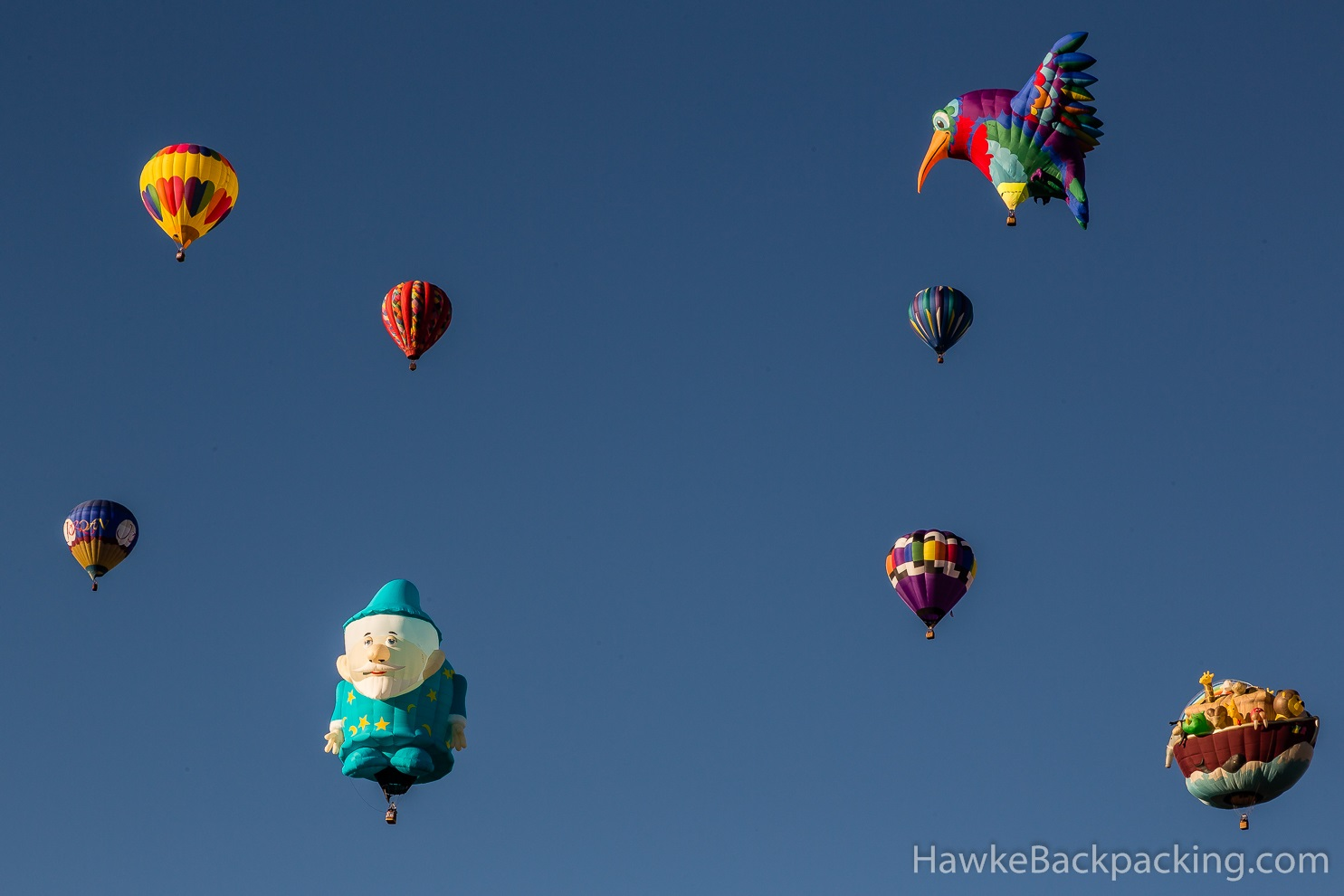 Special Shapes Rodeo Albuquerque International Balloon